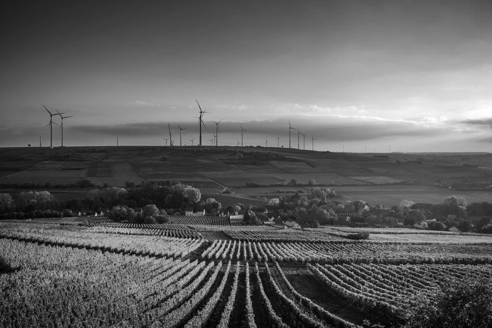 wind solar farm effect on property